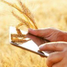 Аграрний реєстр: мобільні групи операторів їдуть до пілотних областей