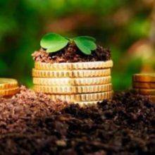 Уряд розподілив 4 млрд грн державної підтримки аграріїв на 2020 рік