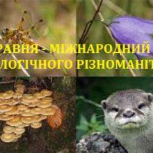 Сьогодні – Міжнародний день біологічного різноманіття