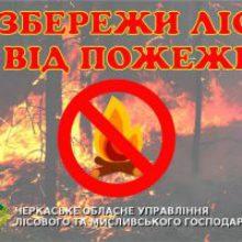 Надзвичайна пожежна небезпека – розводити вогонь у лісі заборонено