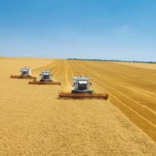 Агропідприємства області – на завершальному етапі збирання ранніх зернових і зернобобових культур
