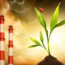 Регіональна доповідь від Управління екології: про стан навколишнього природного середовища в Черкаській області у 2019 році