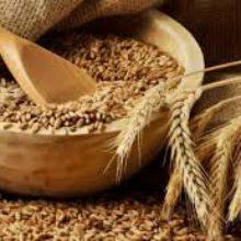 На Черкащині зібрали зернові та технічні культури на 100% площ