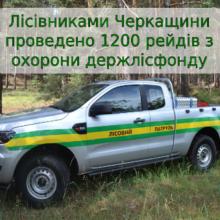 1200 рейдів з охорони лісового фонду провели лісівники Черкащини торік
