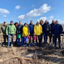 Працівники Черкаської райдержадміністрації долучилися до акції висадки лісових насаджень