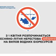 Нерест-2021: в області розпочалася весняно-літня нерестова заборона на вилов риби