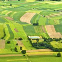 Торік атовцям області передали 2,6 тис. га землі