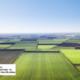 Як купити земельну ділянку