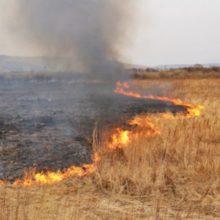 На Черкащині триває пожежонебезпечний період, існує надзвичайно високий ризик виникнення пожеж