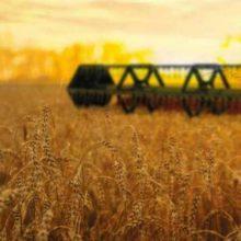 Аграрії області розпочали збирати зернові та зернобобові культури