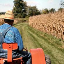 Уряд нарощує програми підтримки українських фермерів, щоб сприяти успішному розвитку ринку землі в країні