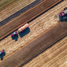 Старт ринку землі: найважливіші питання про новації у сфері землеустрою