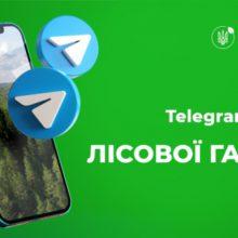 В Україні запустили Телеграм-бот лісової галузі